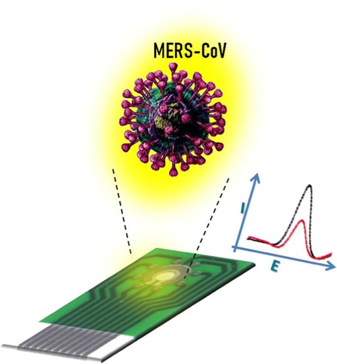 电化学法检测新型冠状病毒(MERS-CoV)的应用